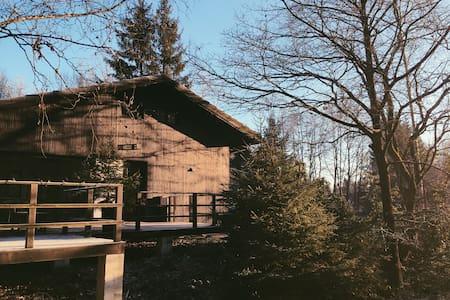 Stijlvolle vakantiewoning - La Roche-en-Ardenne