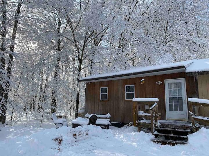 """The Lookout"" Cabin Getaway in the Poconos!"