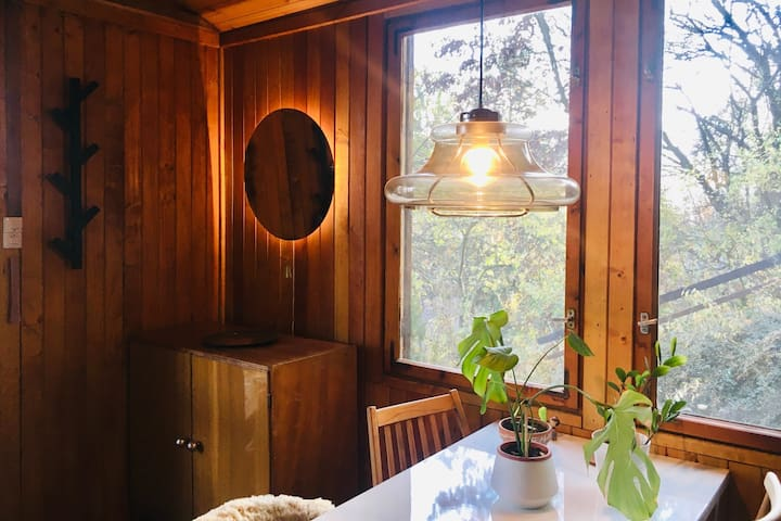Cosy wood cabin with fireplace and Danube panorama