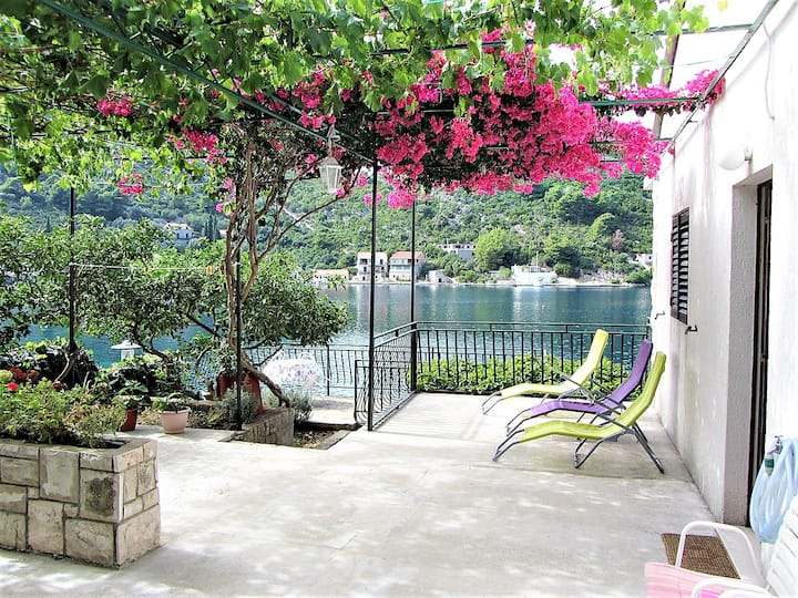 Apartment ZORKA - one step to the sea