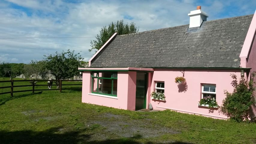 Private Irish farmyard cottage on Castle grounds - Kilcolgan - บ้าน