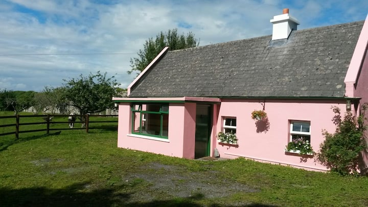 Private Irish farmyard cottage on Castle grounds