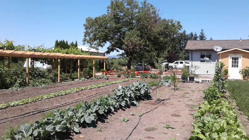 You have free access to our organic vegetable gardens while you're here!