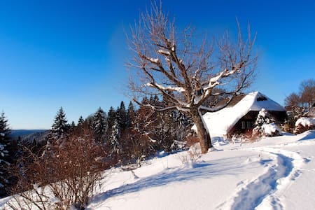 Berghaus - Quiet luxury in the Black Forest - Todtmoos
