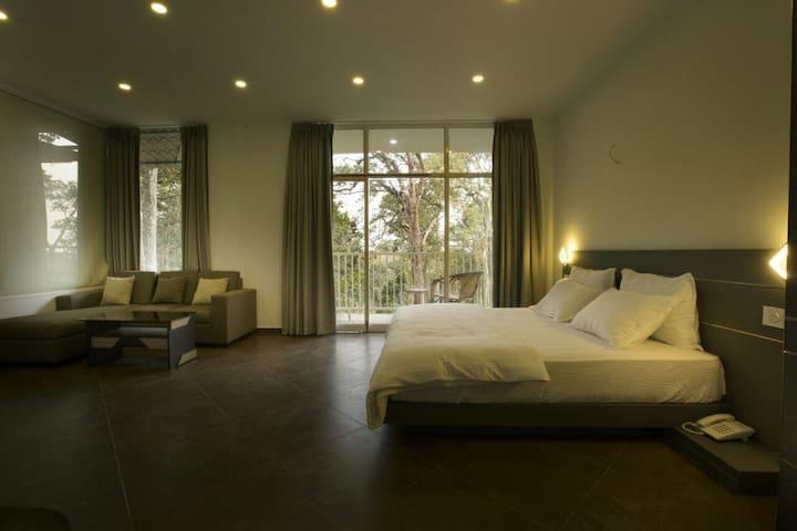 Classy Guest Suite (2)