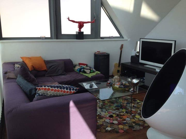 The appartement