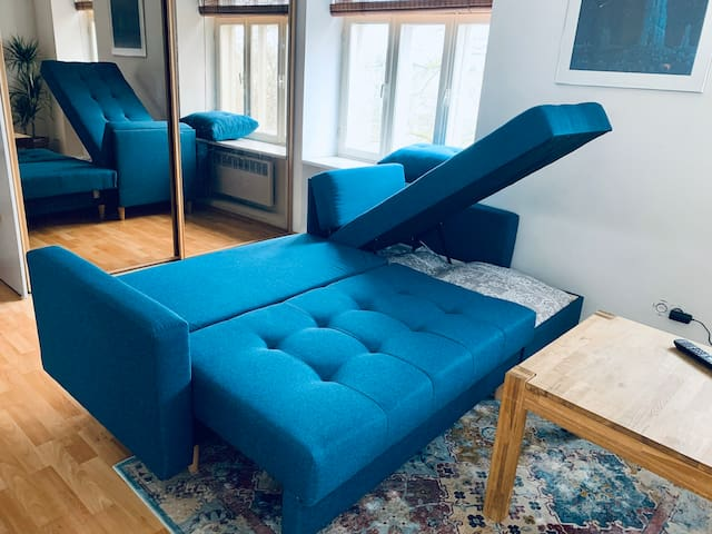 Pull-out sofa. There is an extra mattress that you can put on top of the sofa to feel extra comfortable!