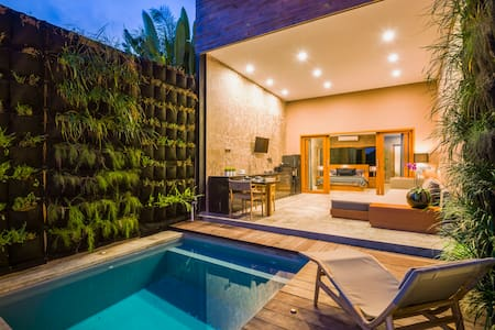 Luxury Honeymoon nest jacuzzi, pool, 1BR villa
