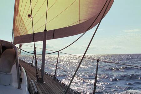Sailing in Sardinia, Maddalena Archipelago - Olbia - Barca