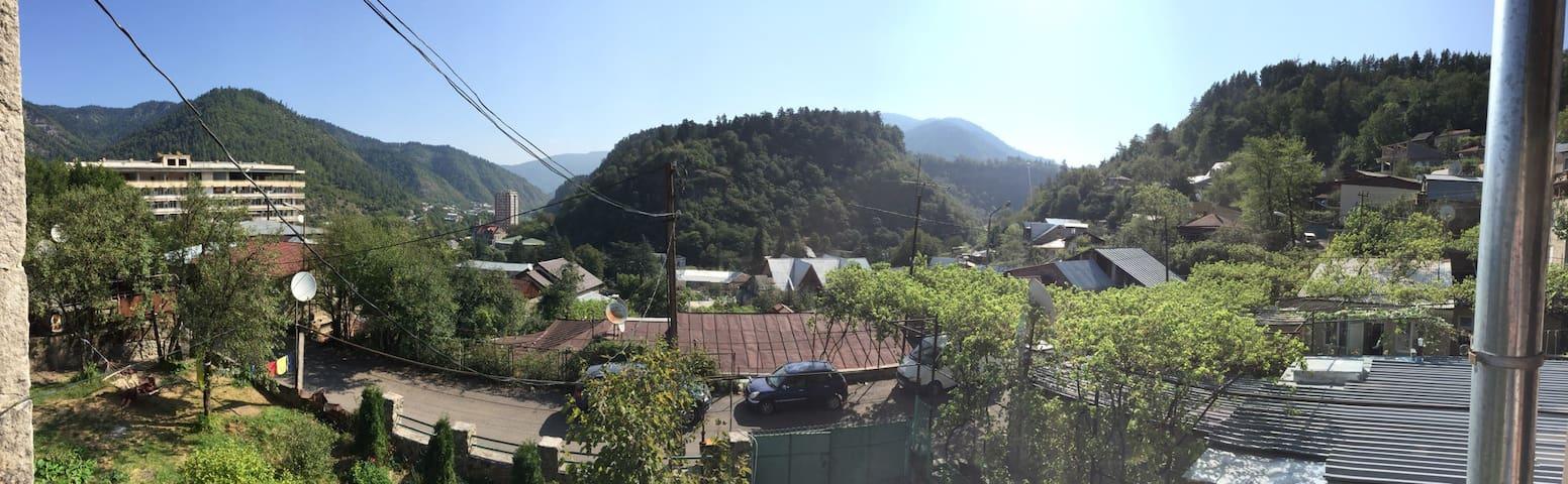 Danelia Residence - Borjomi