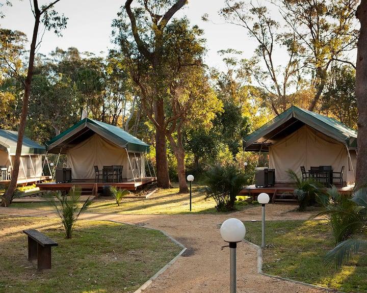 Safari Palm Tent