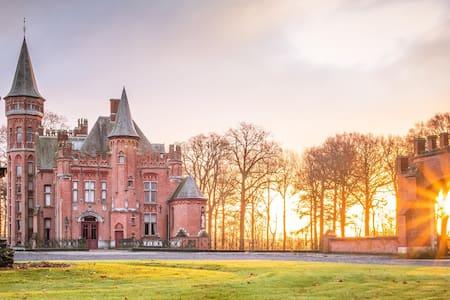 Castle in Bruges (room nr 1)