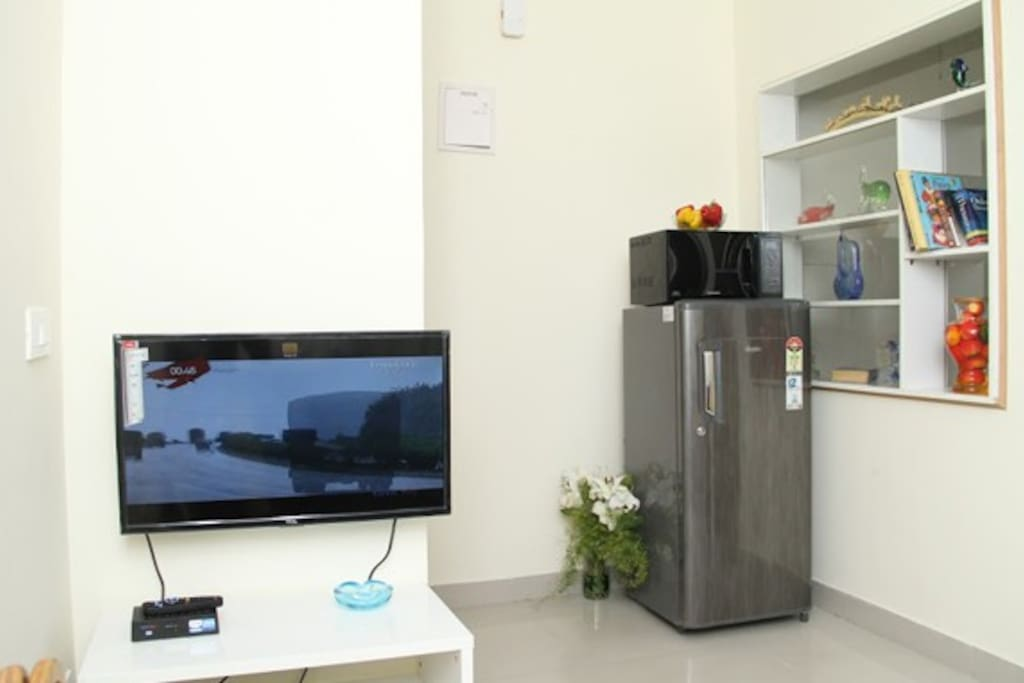 LED Television and full size Fridge