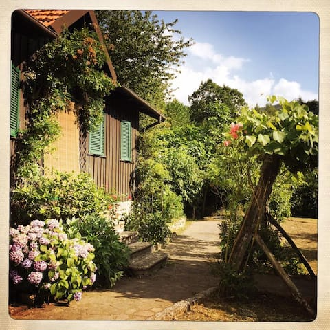 Chalet tra i castagni - Casola in Lunigiana - Casa de campo
