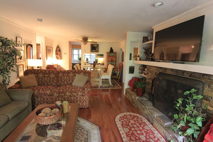 Super Cozy Bear's Den in Big Canoe-2BR Close in