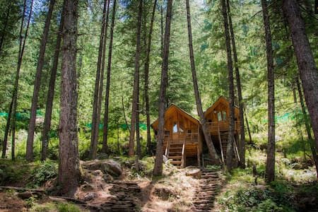 Treehouses | Adventure Huts | Group