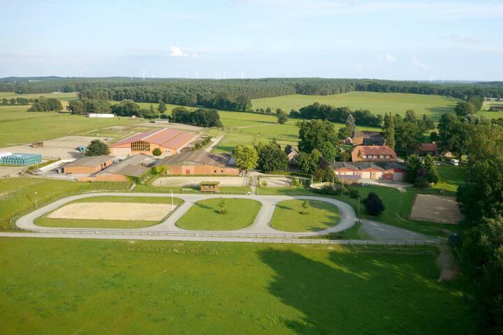Islandpferdegestüt Kronshof - Wohnung Birta - Dahlenburg - Condominio