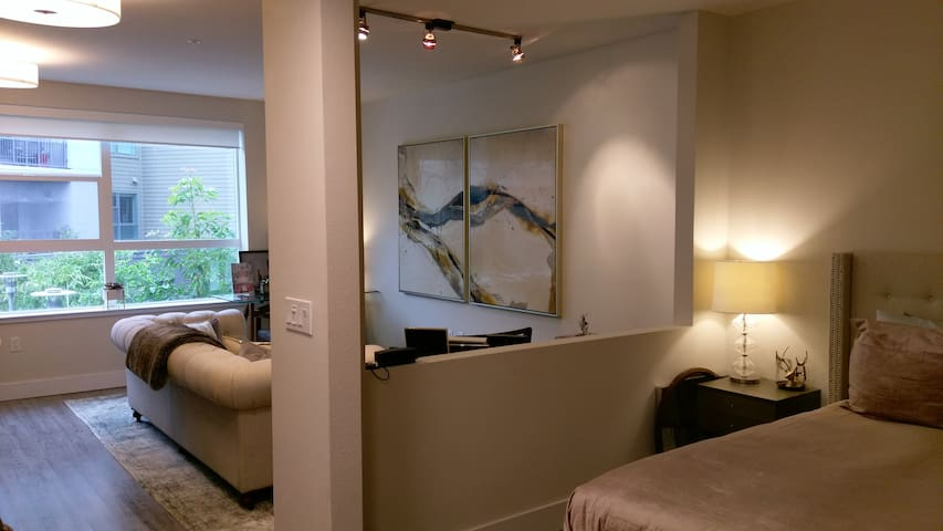 Modern Studio Apartment in Redwood City - Redwood City - Apartment