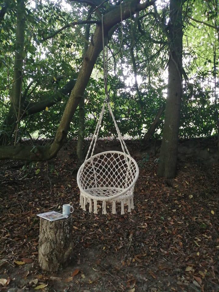 Gîte Calme - Nature & Animaux