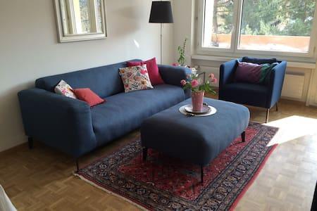 Sweet Sunny Flat in Zurich - Appartement