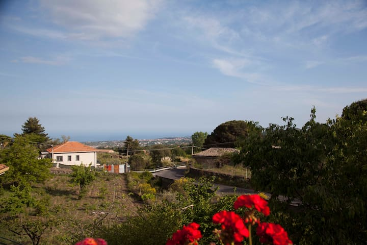 Casa Monte Gorna - Viagrande - Appartement