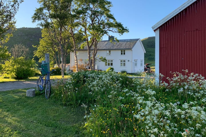 Koselig Nordlandshus ved Leknes i Lofoten