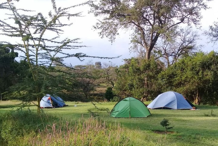 Tandala Ranch camp site