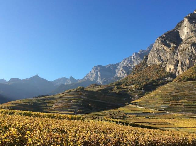 Au cœur du vignoble de Chamoson