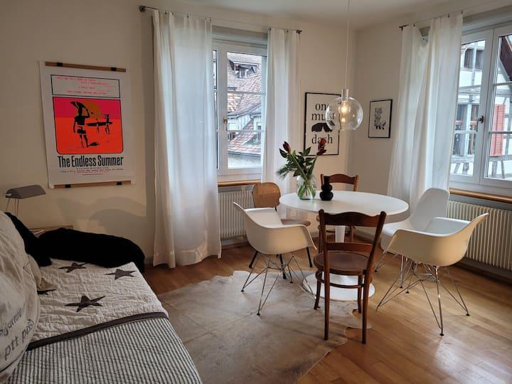 Wohnung für 4 Gäste mit 80m2 in Stein am Rhein
