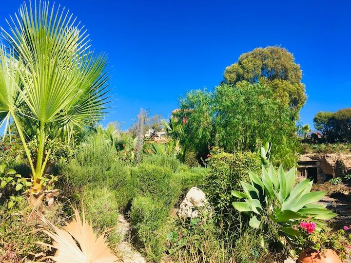 Tenerife Nature Retreat