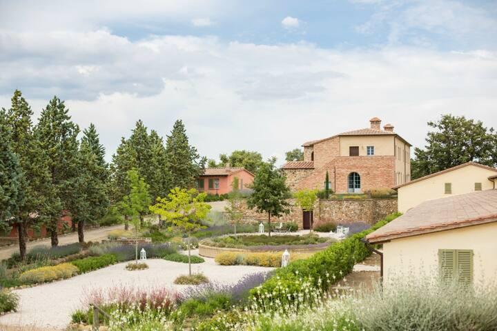 Villa Basilico - 2 bedroom villa in Tuscany