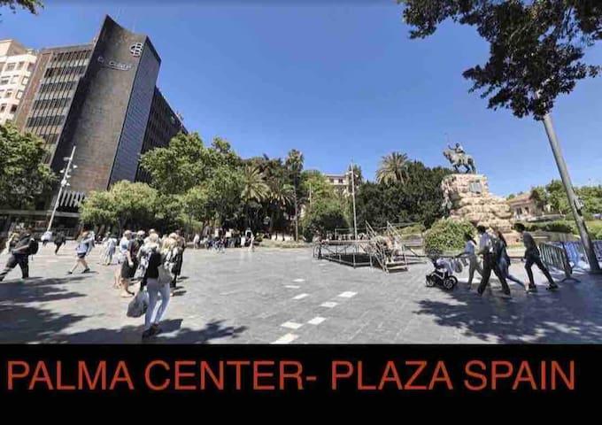 Room  PALMA PLAZA SPAIN + BREAKFAST FREE + BIKE