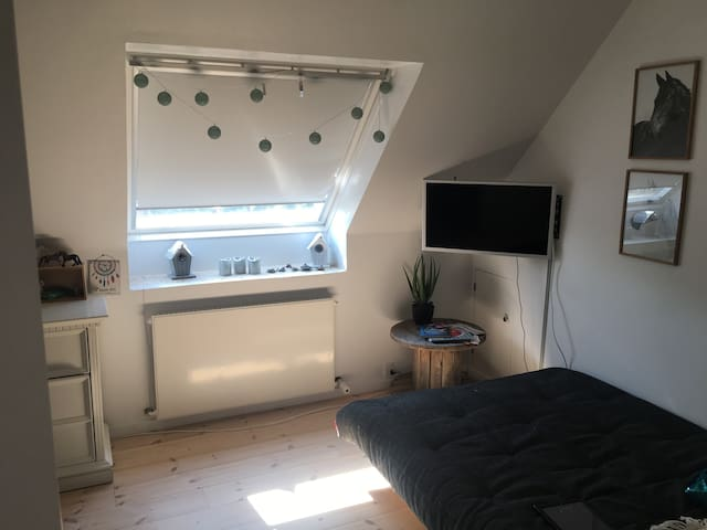 værelse med 1 1/2 Pers sovesofa og skrivebord