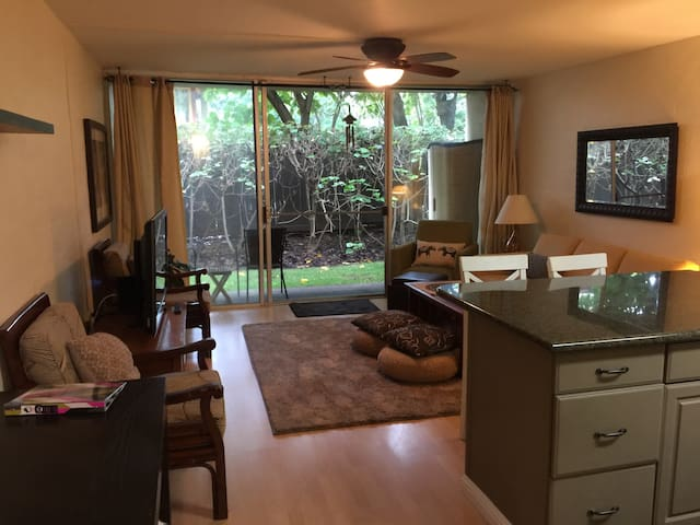 Napili Bay 1 bedroom Condo- Short walk to Beach