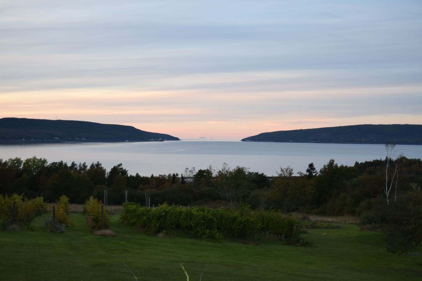 Enjoy a glass of beer while taking in the view of the Digby gut.