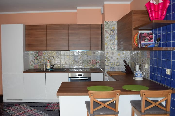 Sunny apartment in the heart of Poznan - Poznań - Apartment