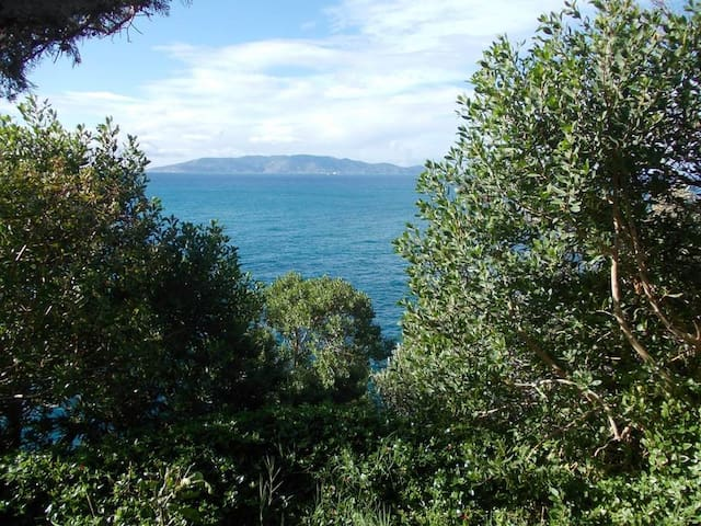 Tuscany House Sea cliff,Arcipelago view+ Beach