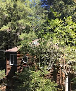 Luxurious space, stand alone, Short walk to town. - Mill Valley - Pis