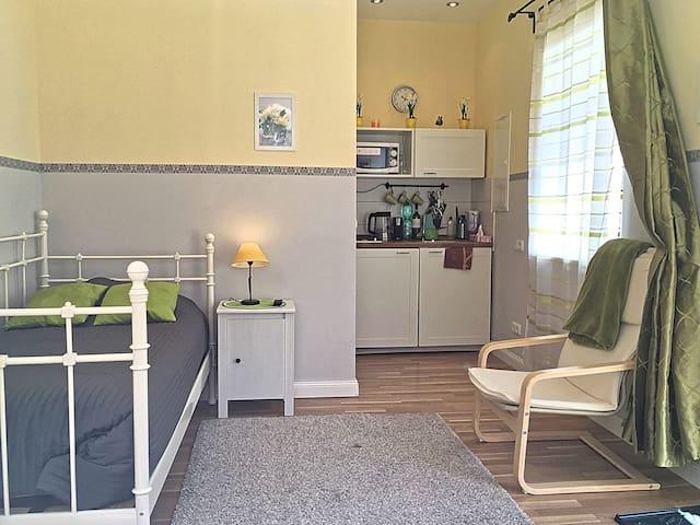 Cozy apartment for one traveler