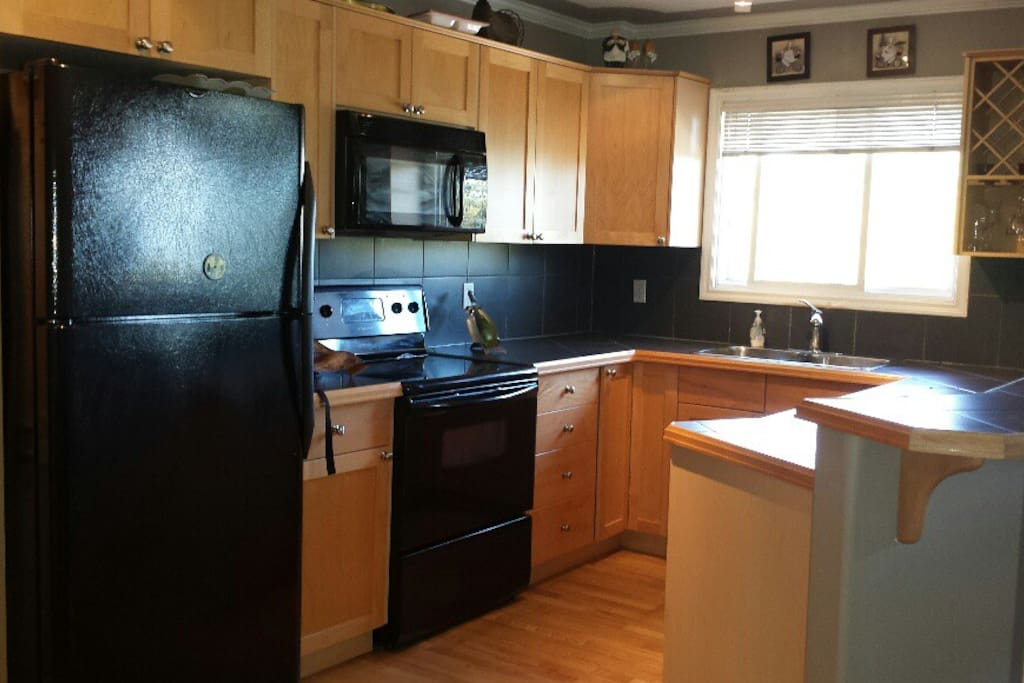 Large open concept and bright kitchen! microwave, fridge bar, wine rack and lots of cupboard space! dish washer as well.