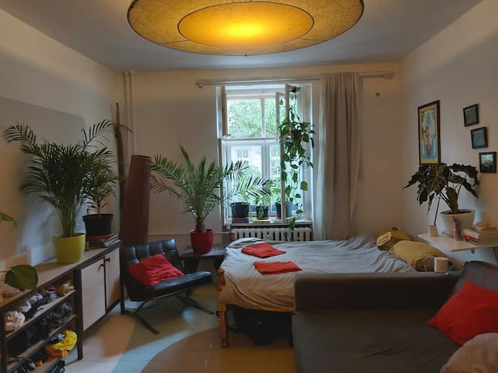 Spacious apartment in the heart of Prenzlauer Berg