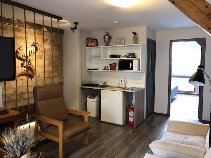 Urban Oasis- central, contemporary  home