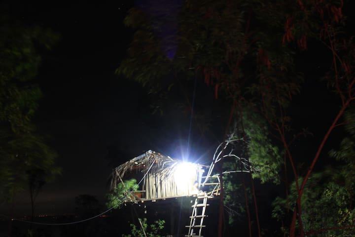 rumah pohon / tree house '' k. kauh. - Nusapenida