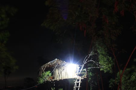 rumah pohon / tree house '' k. kauh. - Nusapenida - ツリーハウス