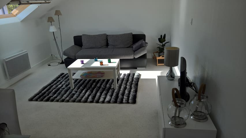 T3 lumineux hypercentre - Angers - Appartement