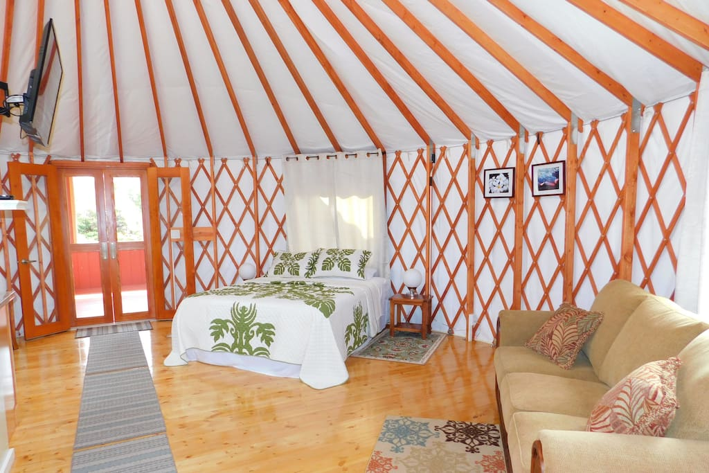 Beauty of the forest in the comfort of a yurt!