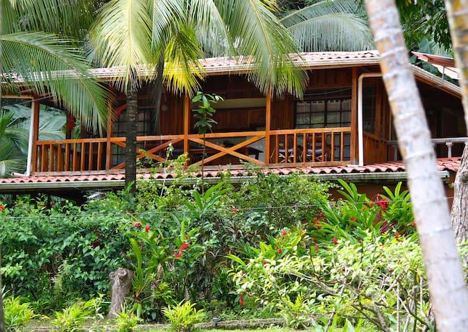 One Bedroom Montezuma Tree House on the Beach
