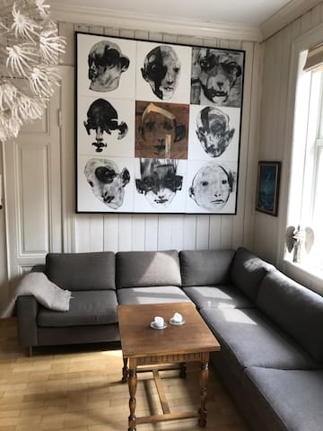 Spacious appart in Oslo inner City