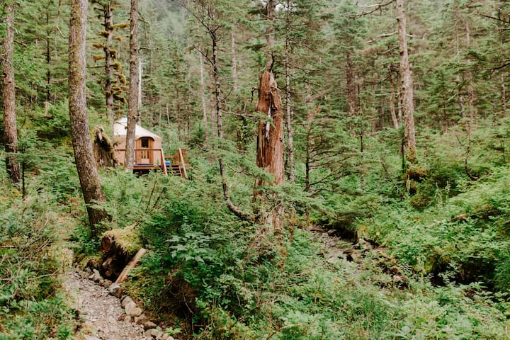 Adventure Package: Yurt, Boat Tour & Kayaking
