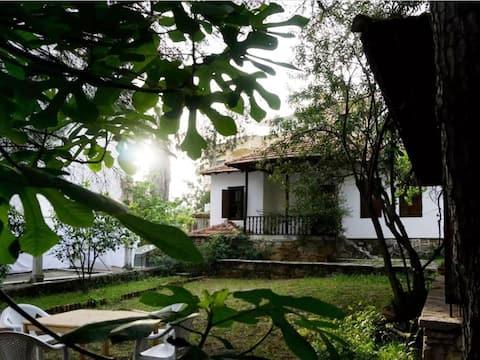 Garden House in the Centre/Merkezdeki Bahçeli Ev